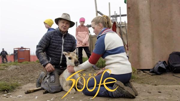 Sööfe bor i Trondheim med sin sørsamiske mor og norske far. Hjemme snakker de mye sørsamisk, men i hverdagen tenker ikke Sööfe så mye over sin samiske herkomst. Men når morfaren dør, finner Sööfe en venninne som lærer henne mer om morsarven.