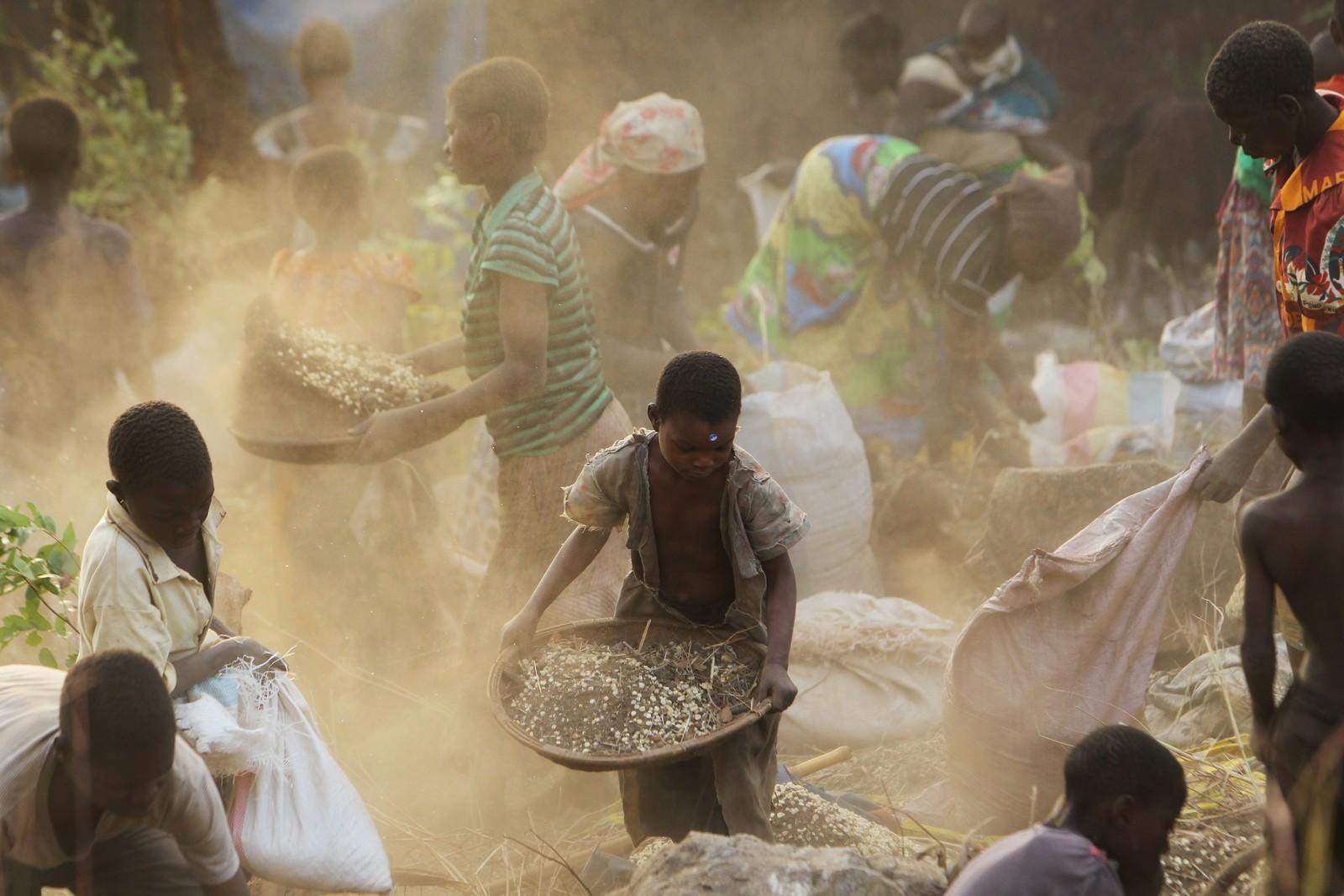 Over 200 landsbybeboere kasta seg over mengder av korn og forsøkte å skille det fra jord etter at en lastebil mista lasten i landsbyen Machinga i Malawi. Mat er ikke en selvsagt ting i det afrikanske landet, og nær 20 prosent av befolkningen skal være ramma av sult.
