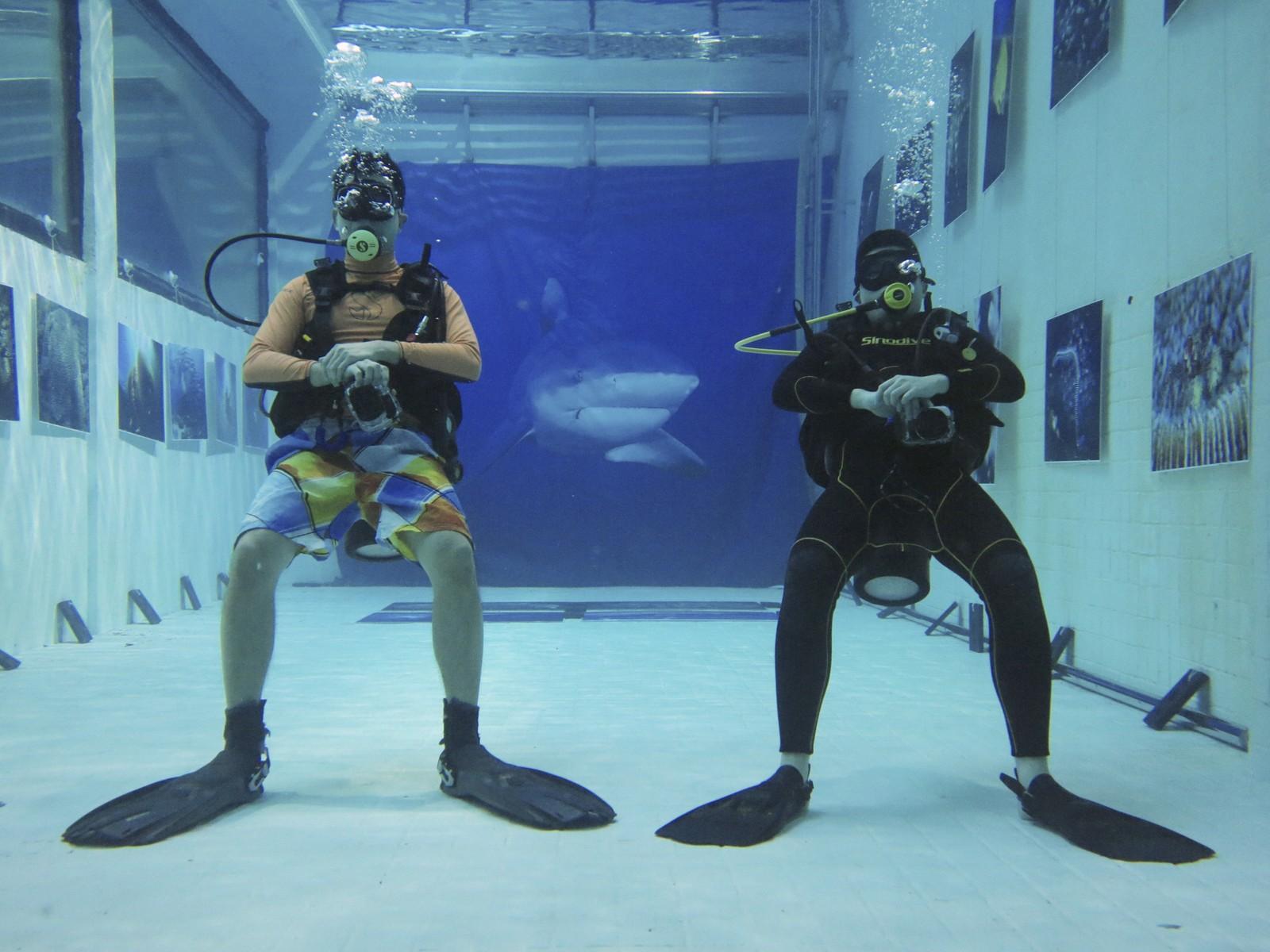 Dette bildet viser to dykkere som besøker en foto-utstilling under vann. Tanken skal ha vært å gi en original opplevelse i et tilnærma lyd- og lufttett miljø.