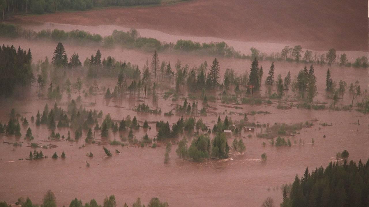Situasjonen i Glomma-vassdraget utviklet seg dramatisk i 1995. Bildet er tatt nord for Elverum.
