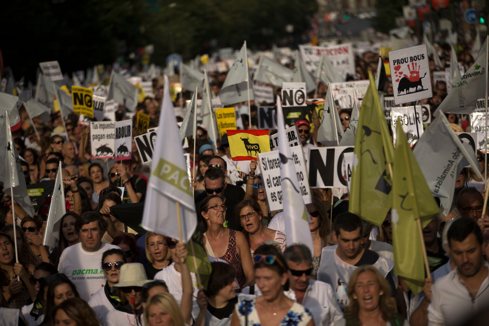Demonstrantane ropte slagord mot tyrefekting medan dei marsjerte gjennom sentrum av Madrid.