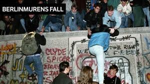 Dagsrevyen: 10. november 1989
