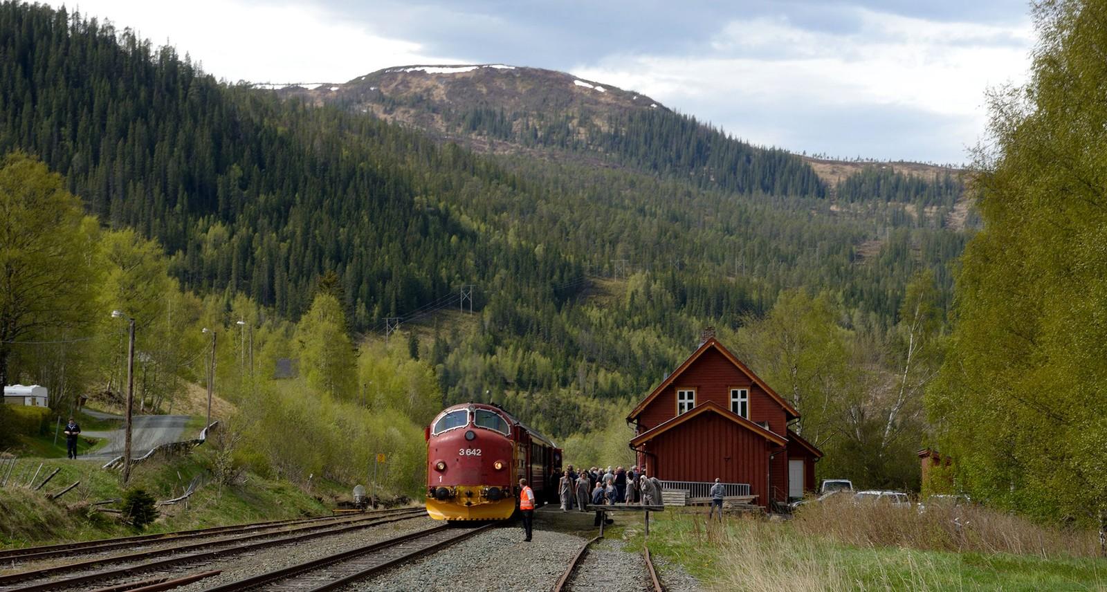 03.06 Gudå stasjon