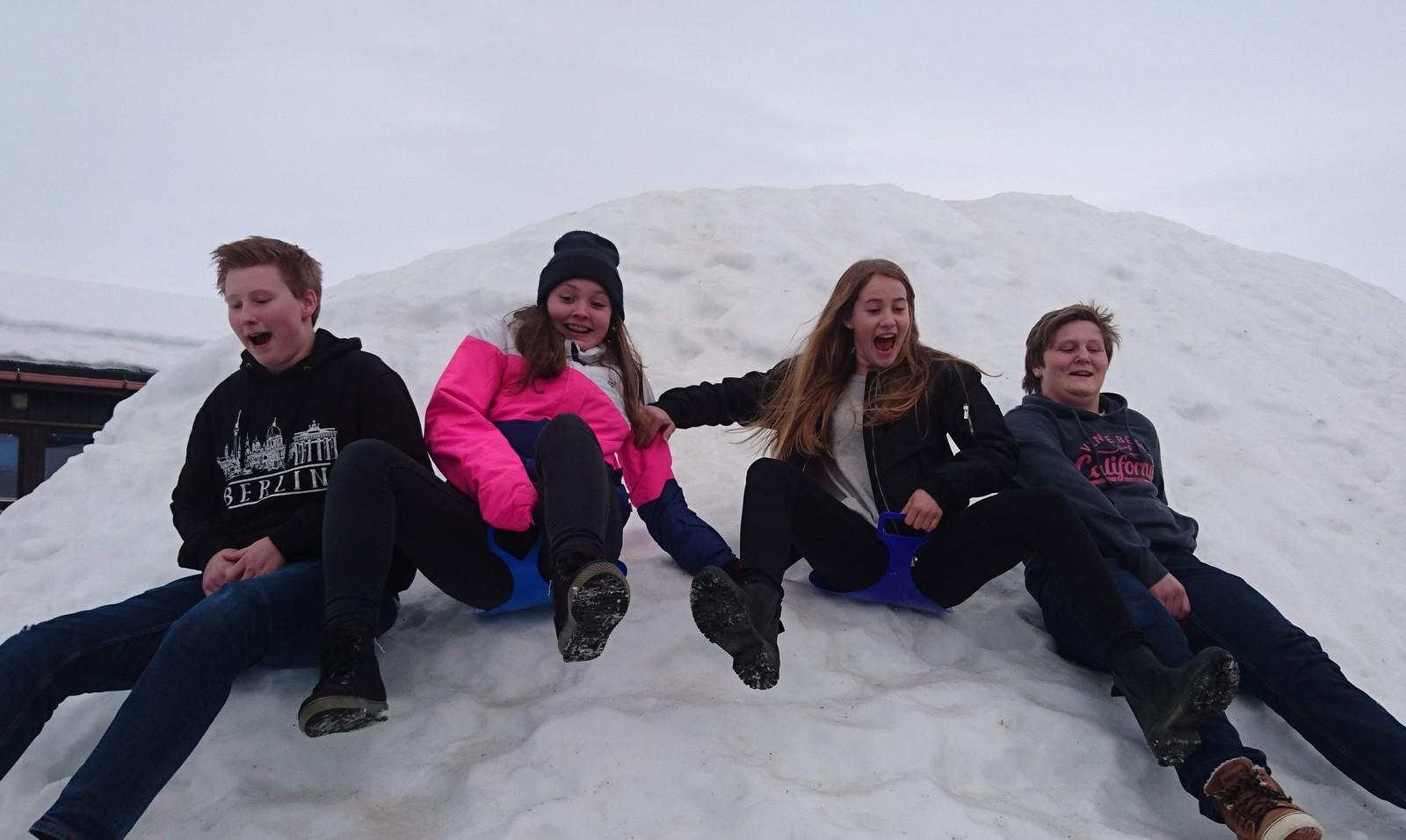 Lesjaskog skule: Frå venstre: Bjørner Bakken, Anette Sangro (reserve) Alexandra Stella Erixon og Joakim Heggem Nordsletten