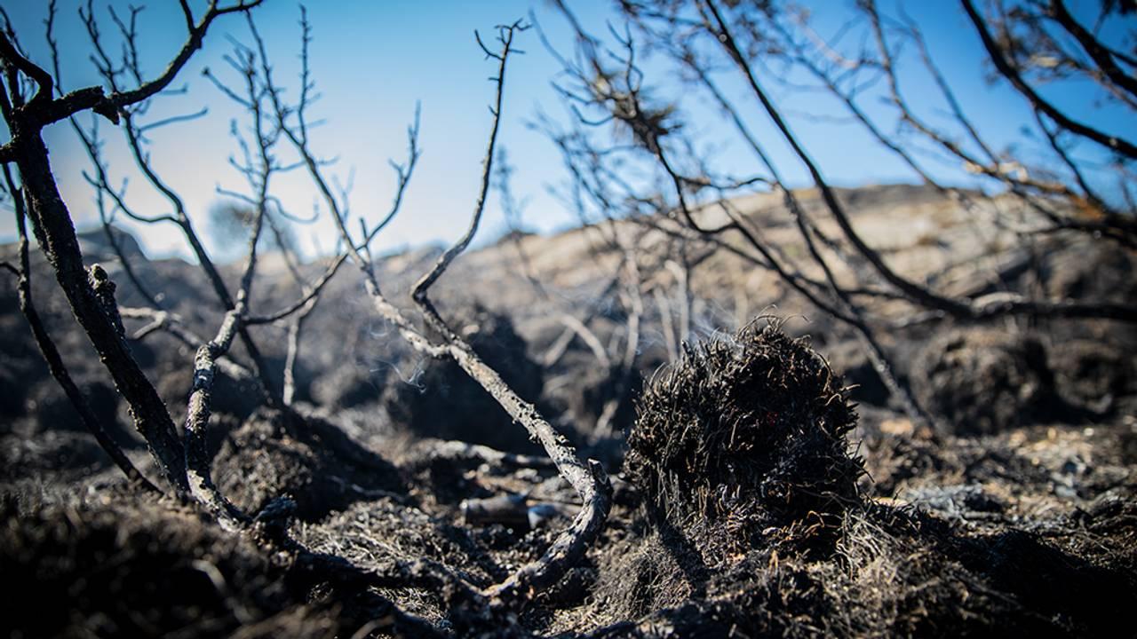 Glør og røyk i terrenget på Kårtveit på Sotra