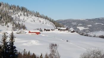Baukholsgrenda i Sør-Fron