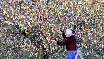Volker Kraft har 10.000 egg i hagen