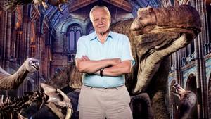 En natt på museet med David Attenborough