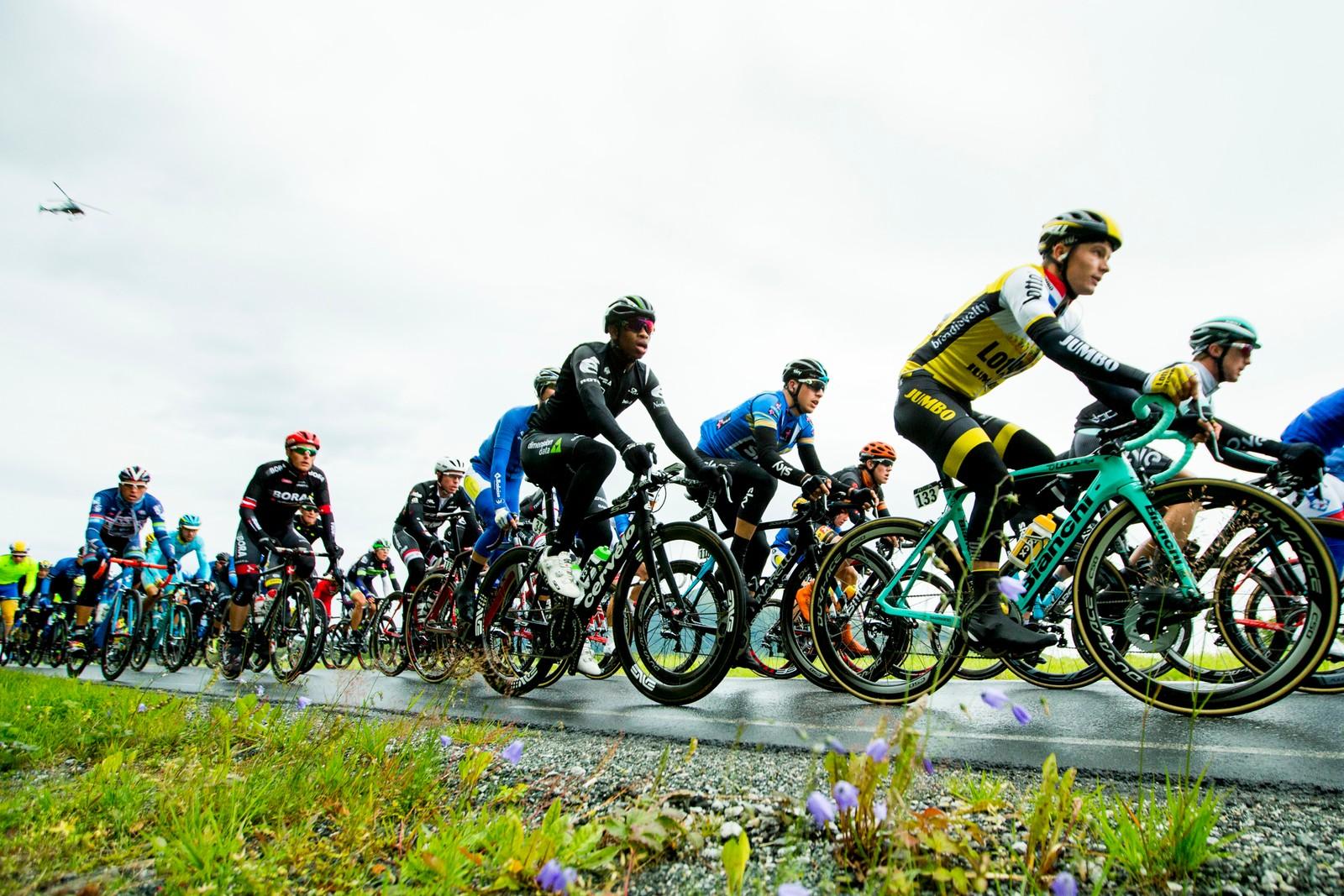 Songezo Jim fra Sør-Afrika (Team Dimension Data) under tredje etappe i sykkelrittet Arctic Race of Norway lørdag. Etappen gikk fra Nesna til Korgfjellet.