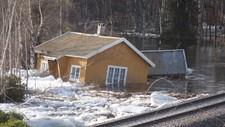 GLOMMA FLOMMER OVER: Store is- og vannmasser i Glomma har ført til flere lokale flommer. Her nord for Hanestad i Rendalen i helgen.