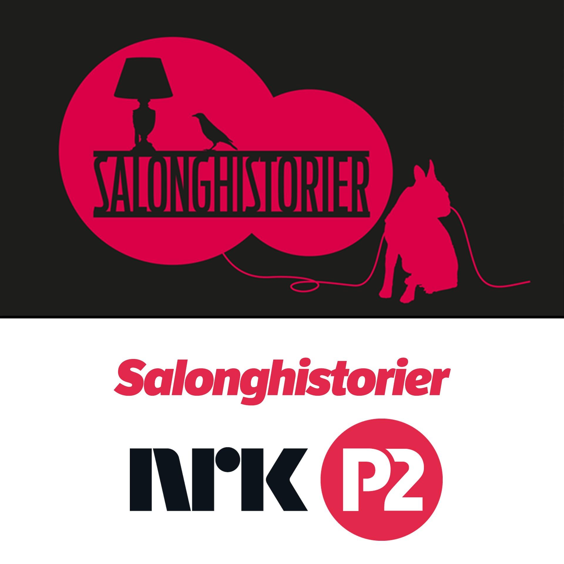 Salonghistorier