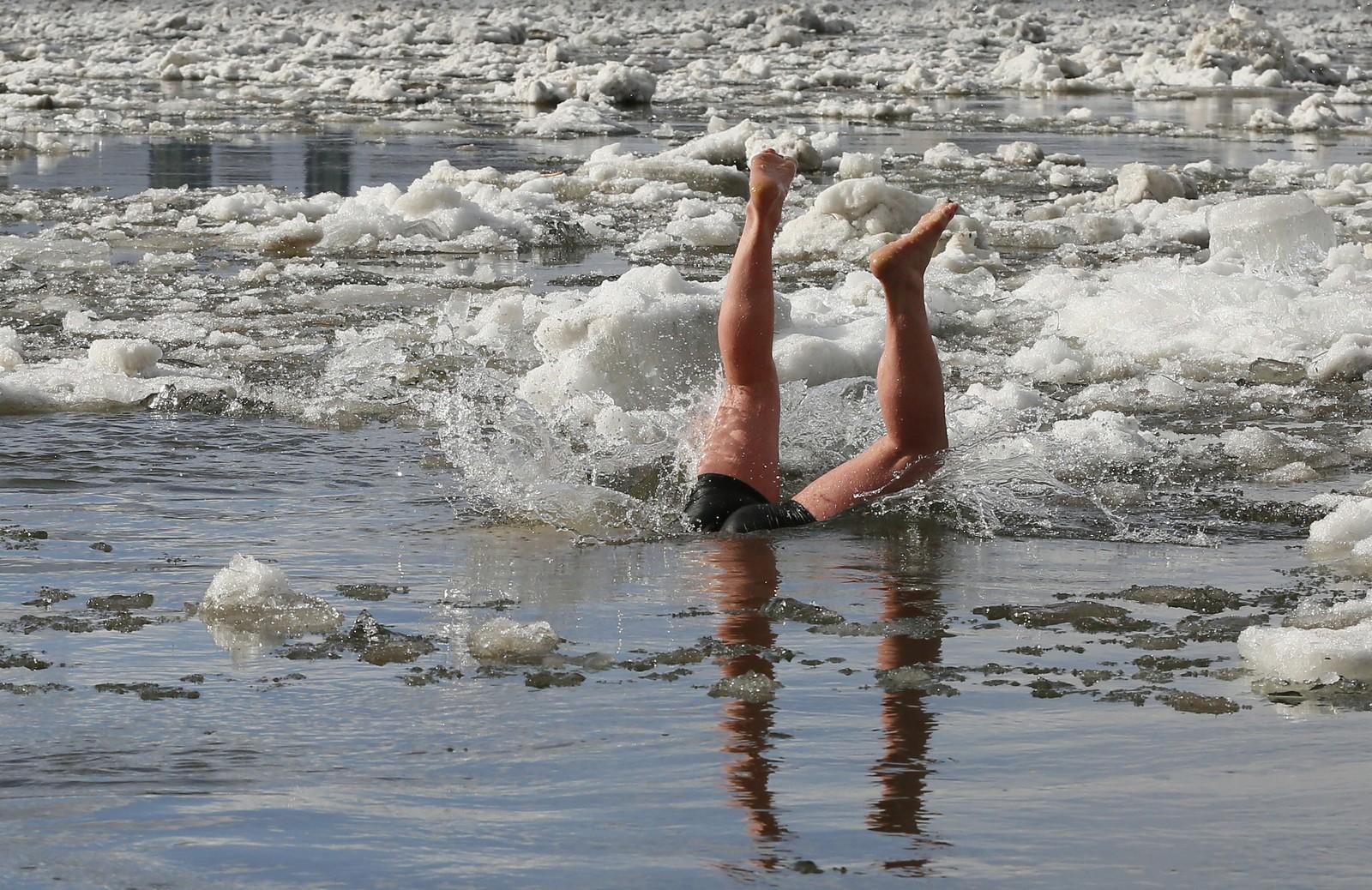 De kaller seg hvalrossene fra Yenisei, og er en isbadeklubb i Krasnoyarsk, Russland.