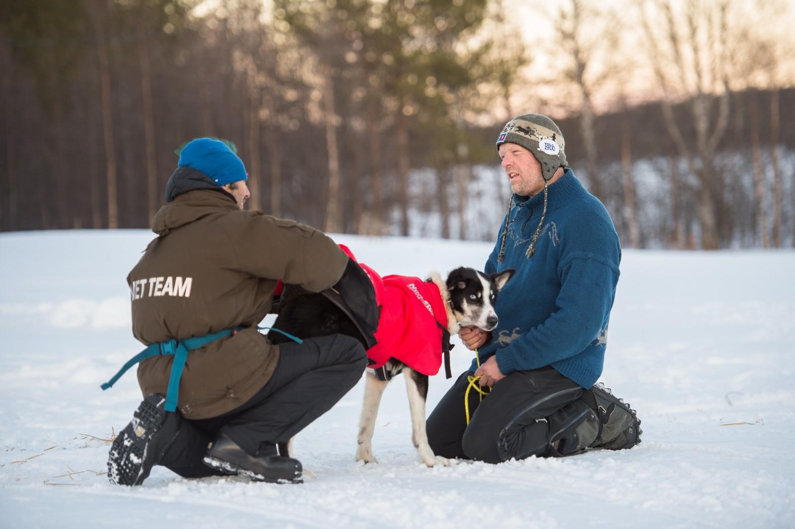 Arne Karlstrøm sjekker en hund sammen med veterinæren på sjekkpunktet i Øvre Pasvik. Han valgte å bryte årets Finnmarksløp.