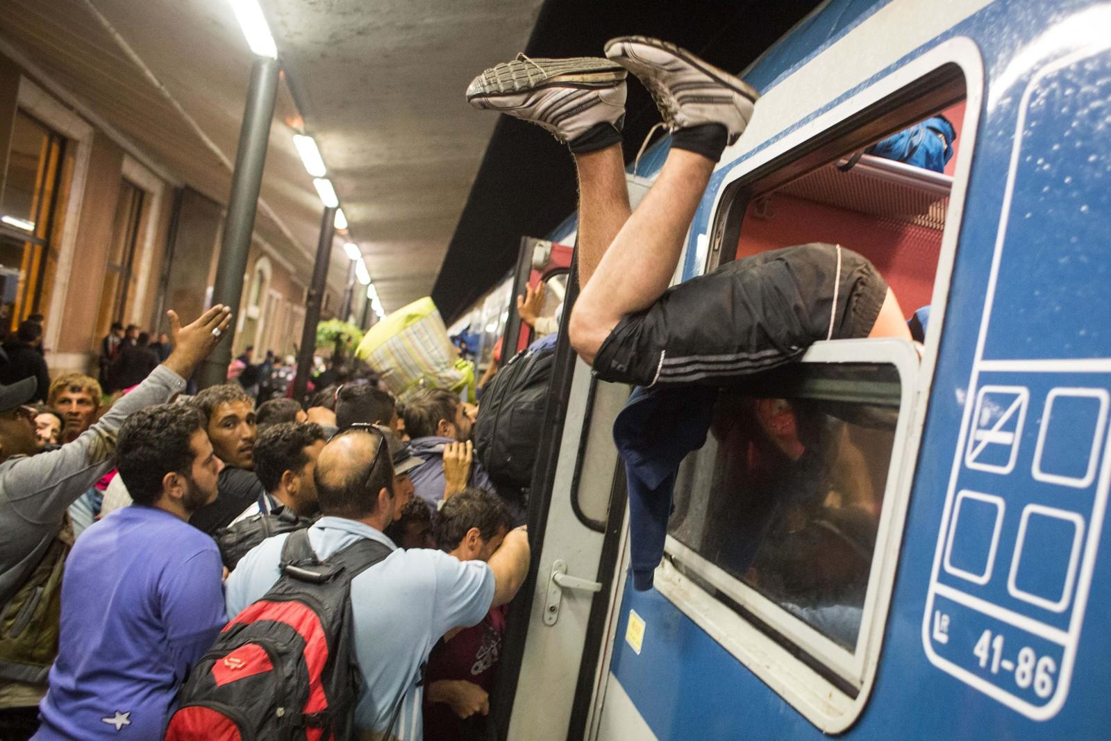 Flyktninger kjemper seg om bord i et tog fra Gyor til Hegyeshalom i Ungarn 19. september.