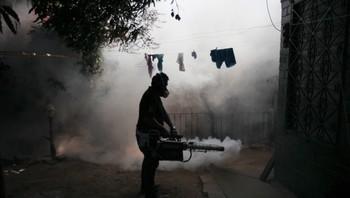 Sprayer mot mygg