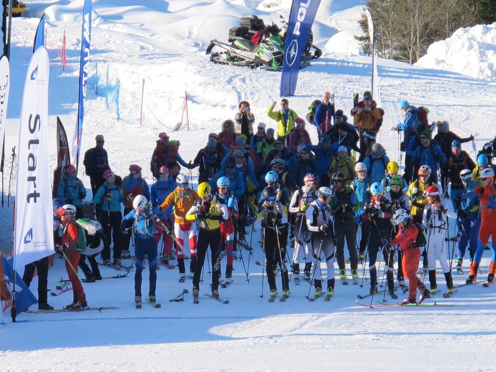 Det var til saman 83 deltakarar på Stryn Rando 3000. Her frå starten i konkurranseklassen der 32 løparar var med.