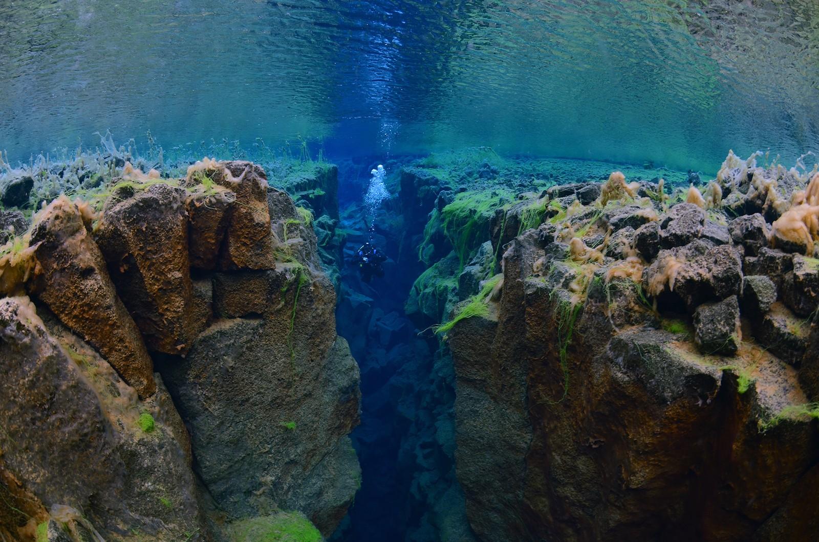 Fra Silfra, en sprekk i vannet Þingvellirvatnsom er en del av kontinentalsprekken på Island