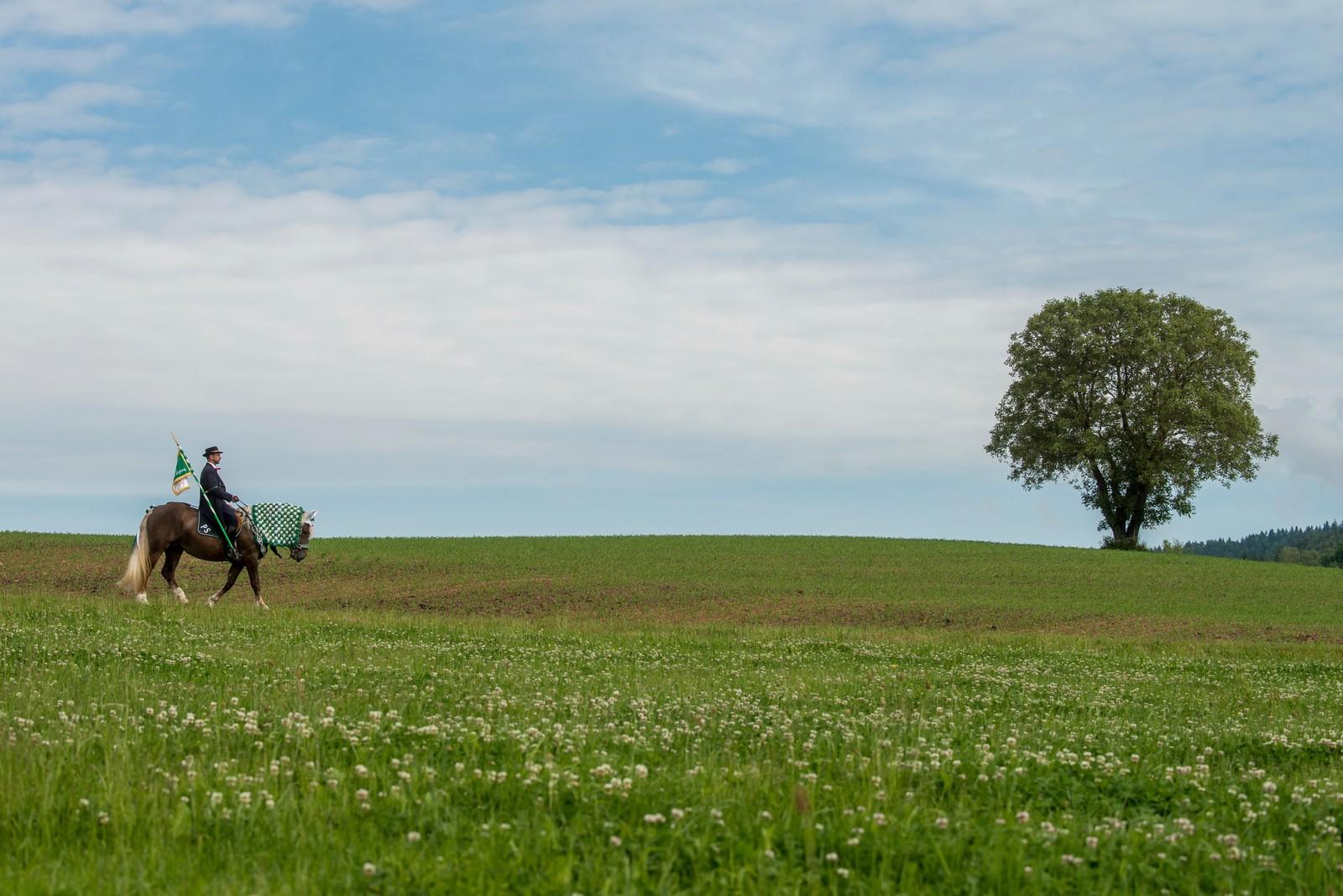 Én av de 900 rytterne som deltok i en tradisjonell prosesjon i nærheten av Bad Koetzing i Tyskland.