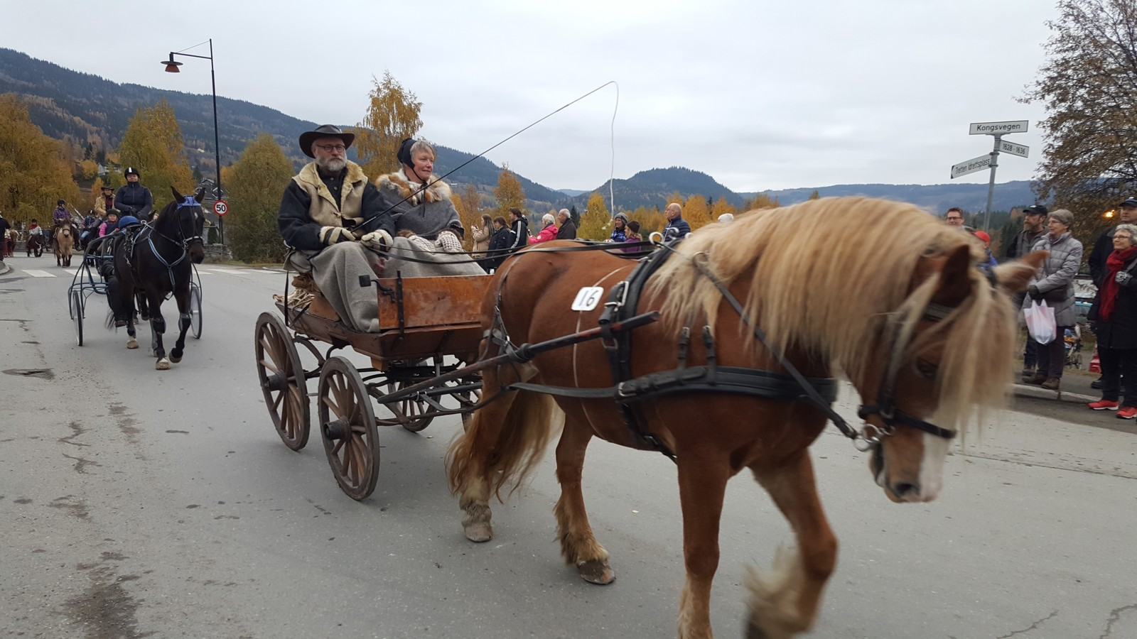 TRADISJON: Martnsopptog med hester gjennom sentrum av Tretten er en tradisjon på Stavsmartn gjennom snart 20 år.