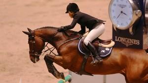 18:30 · VM hestesport: Sprangridning, individuell finale