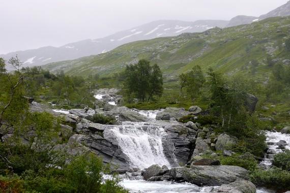 Natur på Hardangervidda