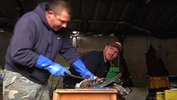 Flere fiskere i Wells-next-the-Sea fanger nå fugler i stedet for fisk