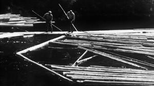 Tømmerfløting - en transportform som forsvinner?