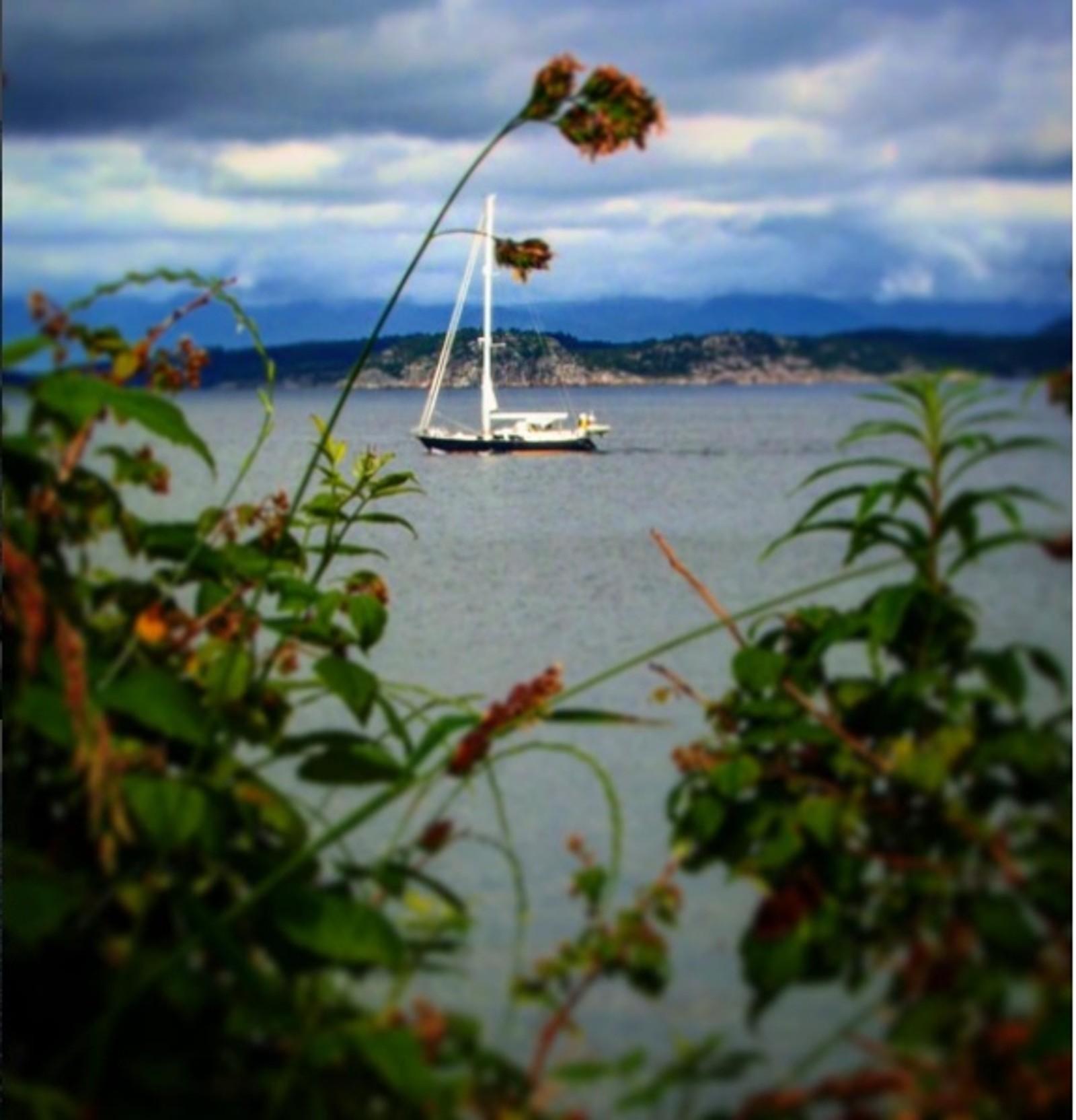 Seilbåt sett fra Mariero i Stavanger.