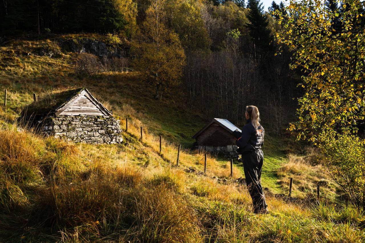 Naturbilder fra Havrå, nasjonalromantikk