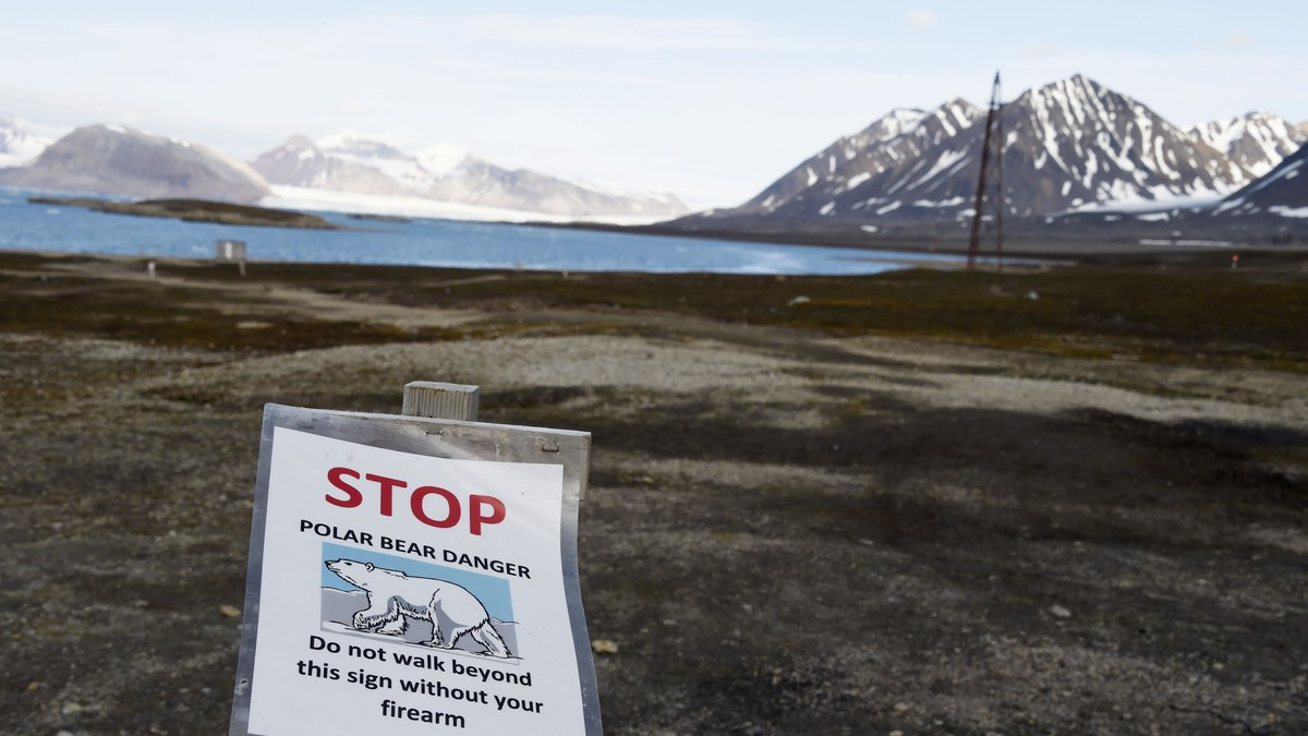 Klimaendringene gjør Arktis grønnere – men Svalbard brunere