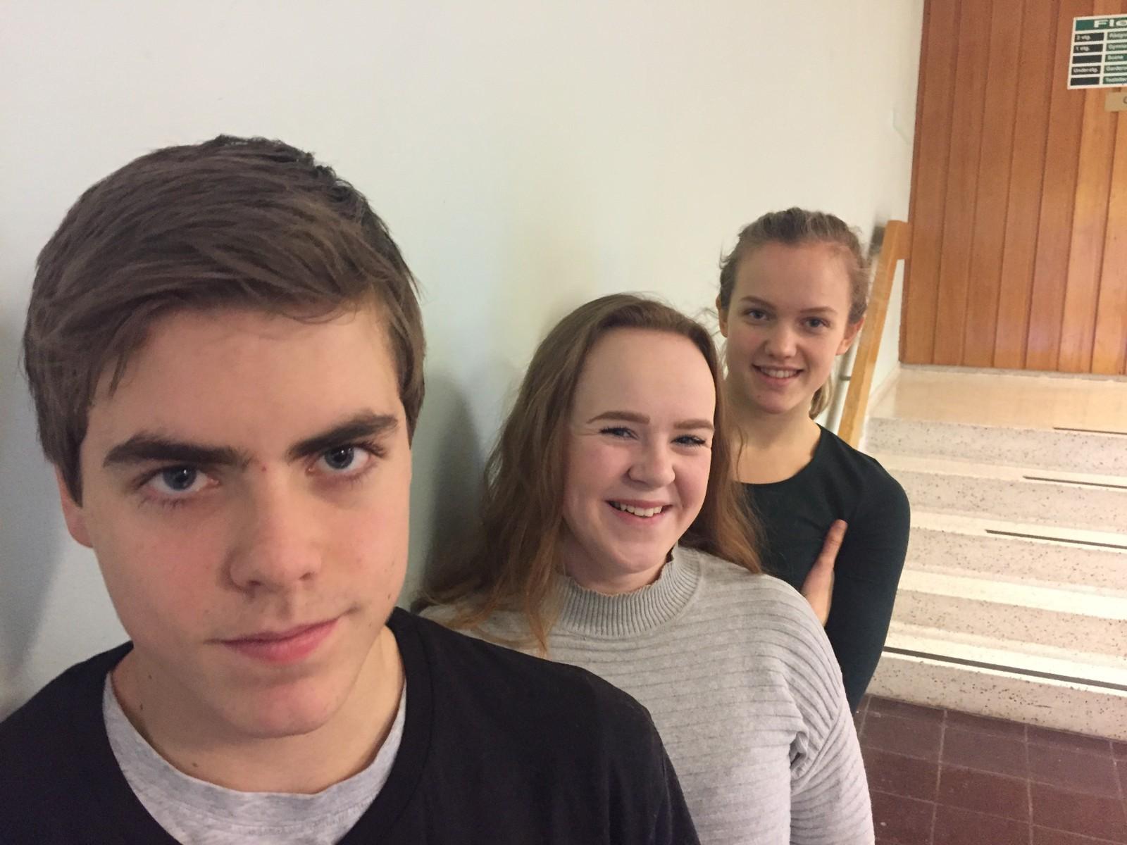 HØKNES UNGDOMSSKOLE: Stian Aglen, Vilde Løvmo og Karen Theresie Bech