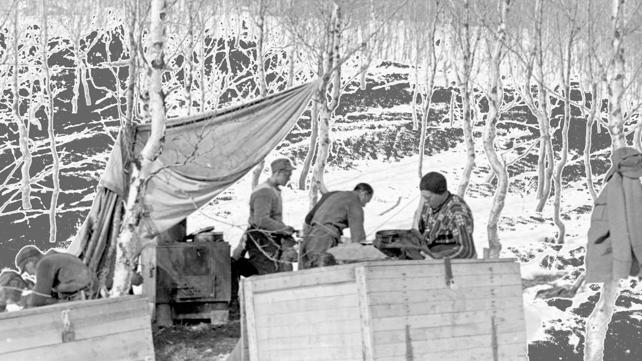 proviant- / kjøkkenseksjonen, trønderbataljonen