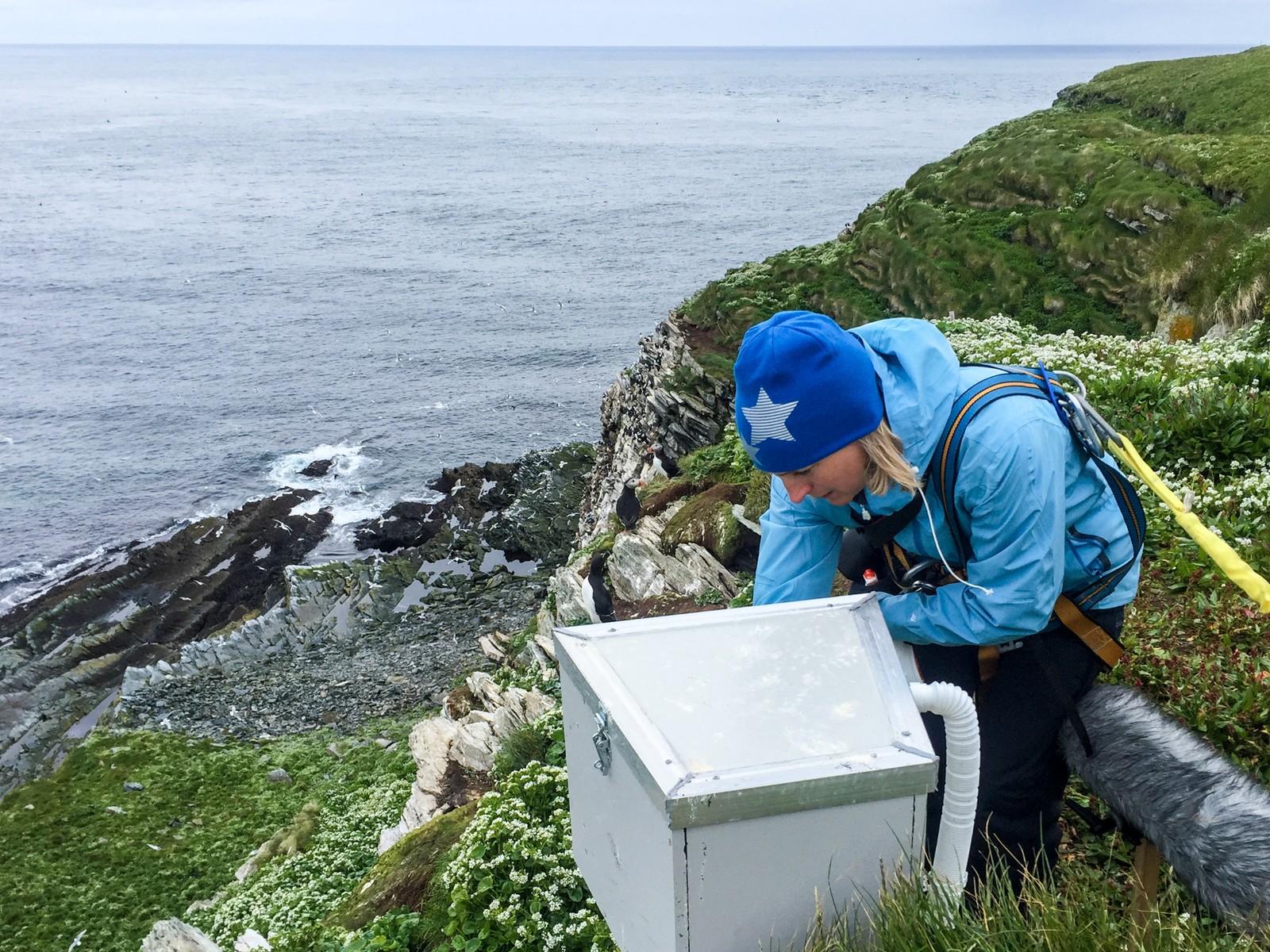 Fugleskitt er det mye av: her vasker Astrid Rommetveit alkekameraet.