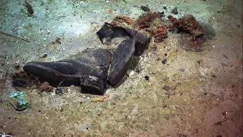 Sko som stammer fra Titanic