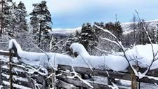 I`M DREAMING OF...: Sesongvarselet fra det Europeiske Værsenteret antyder en kaldere vinter enn normalt i Nord-Europa. Men det er mulig kulden holder seg unna til over nyttår.