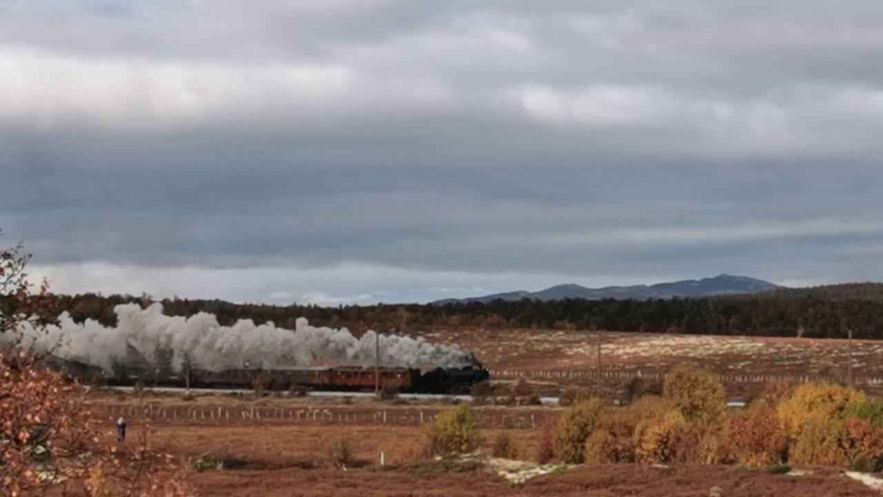 Damptog kjører i høstlandskap på Dovrebanen