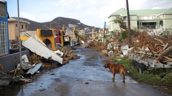 Orkanen Irma - Foto: ANDRES MARTINEZ CASARES/Reuters