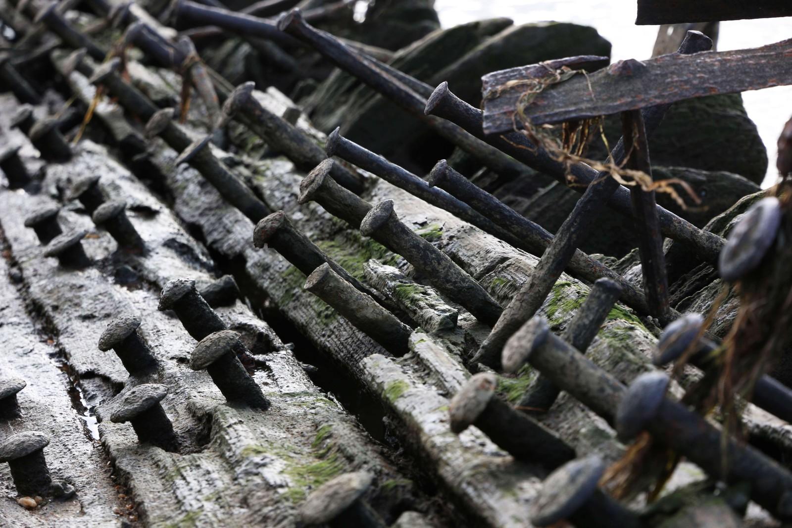 Nagler på skipsvrak i Mallows Bay