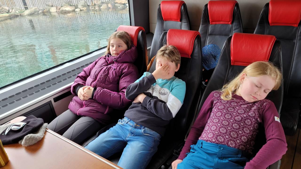 Hele Norge svømmer: Slitne elever ved Meløy skole tar ferga tilbake til Meløy etter svømmeundervisning på fastlandet.