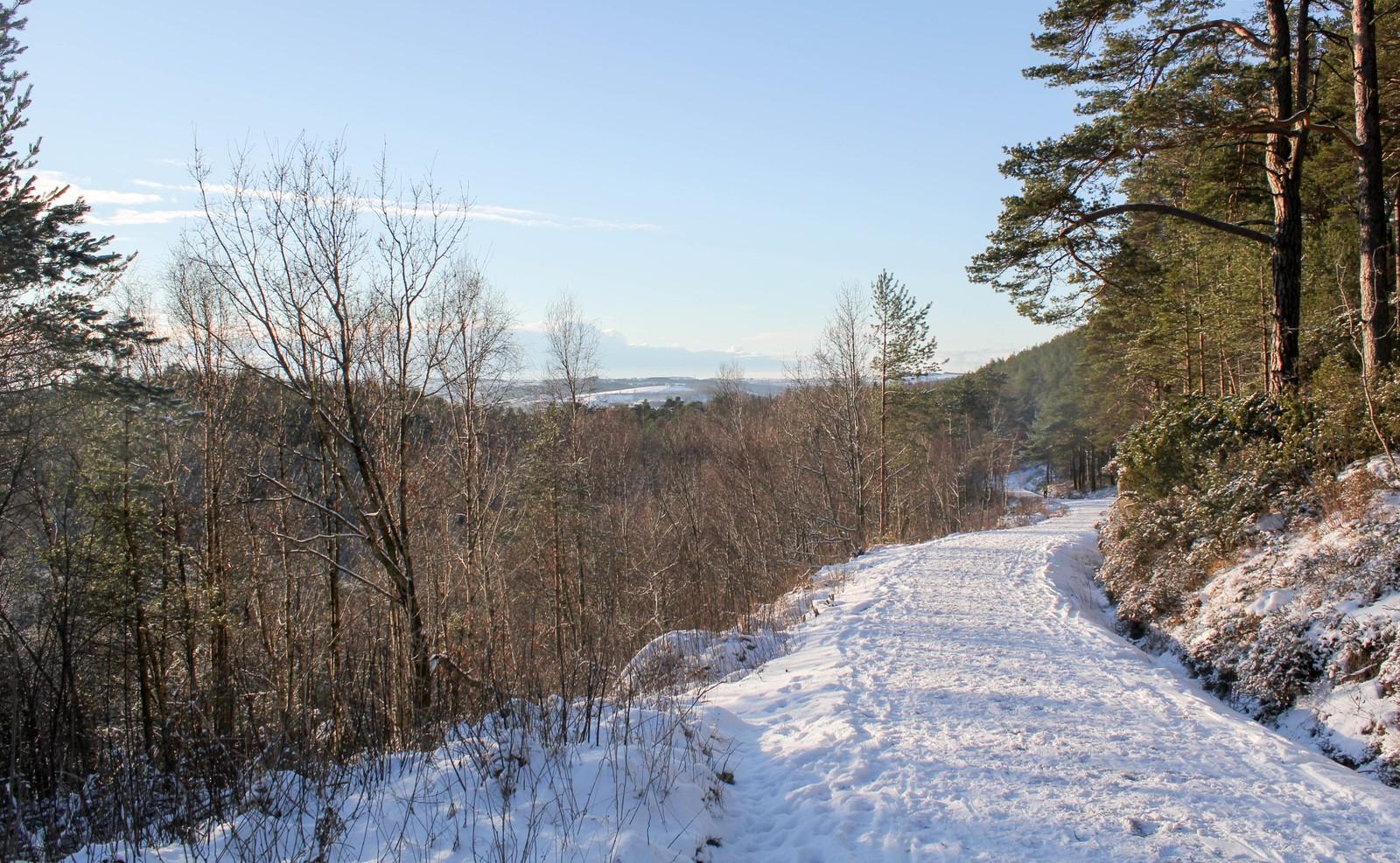 Plassatjern-området mot Foss Eikeland