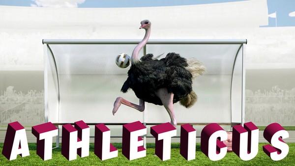 Ville dyr konkurrerer i forskjellige idrettsgrener.Fransk animasjonsserie.