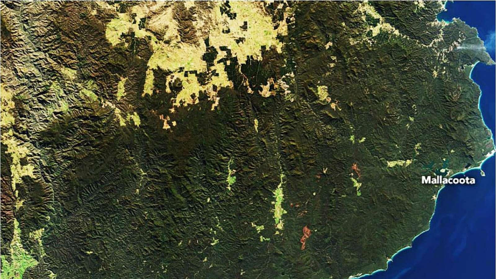 Satellittbilde fra romfartsorganisasjonen Nasa tatt av Sørøst-Australia 24. juli 2019.