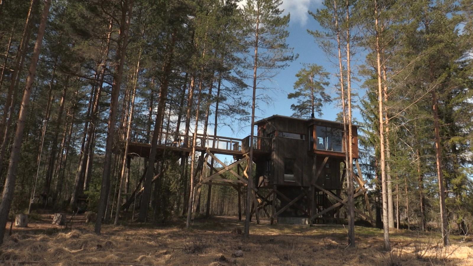 Kråkeslottet er luksusutgaven av ei tretopphytte. Her er dusj, strøm, stor stue og innedo.