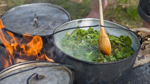 Hva er samisk mat?