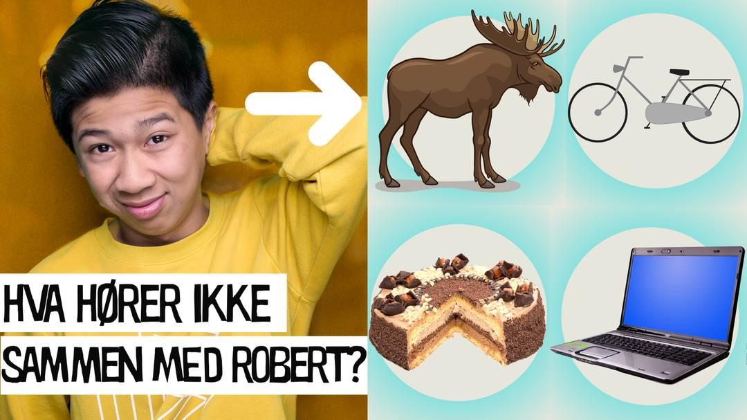 Hva hører ikke sammen med Robert fra ZombieLars? Elg, sykkel, kake eller laptop?