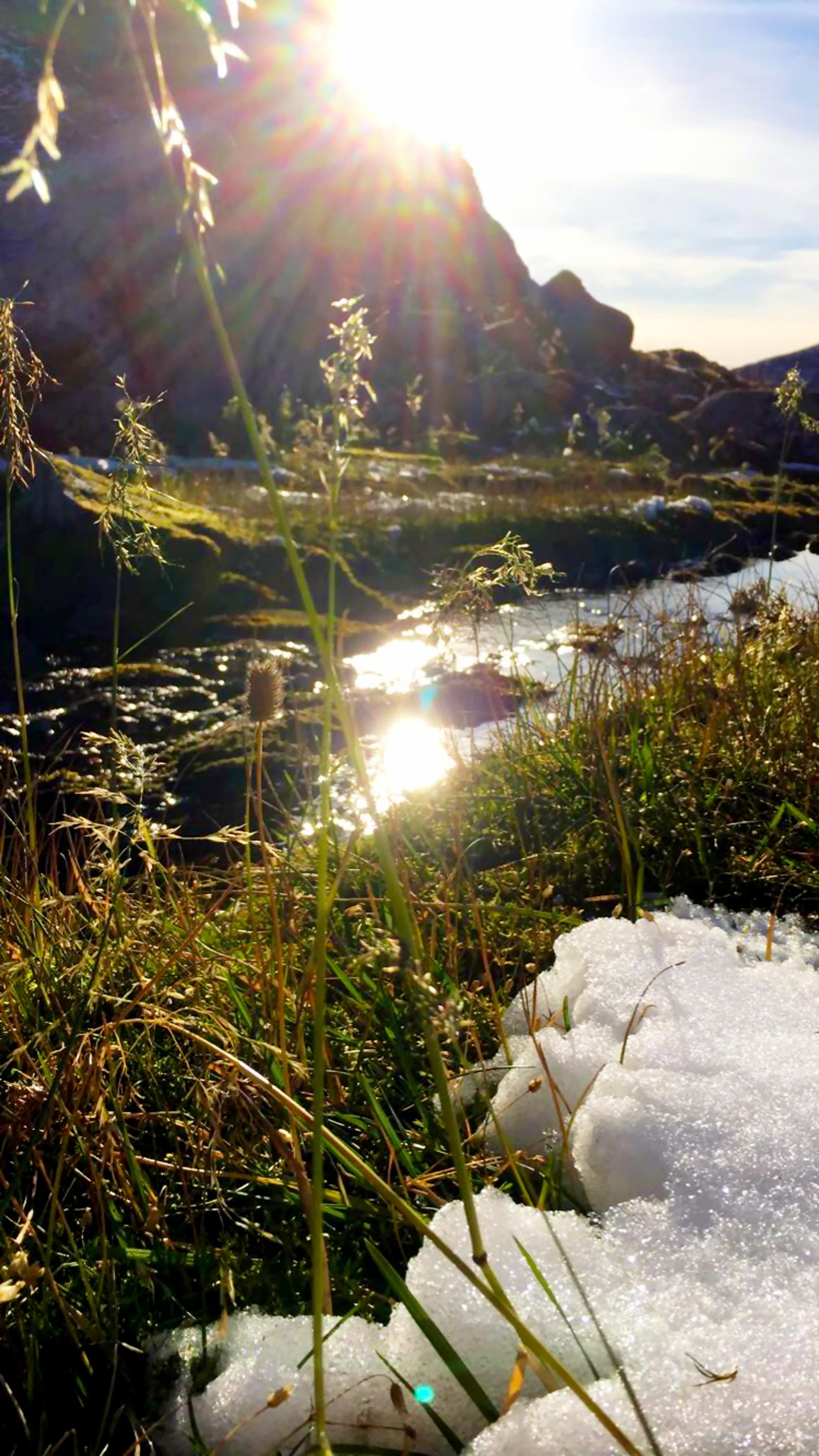Strå i både sol og snø, Sollibotn i Jølster.