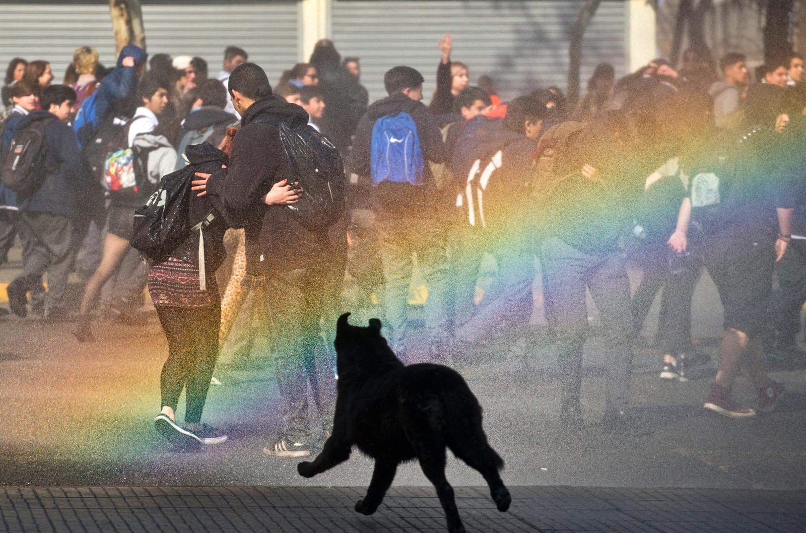 En hund løper gjennom en liten regnbue som ble dannet etter at politiet brukte vannkanon mot studenter i Santiago i Chile den 4. august. Studentene demonstrerte for en utdanningsreform. De krever gratis skolegang på alle nivåer.