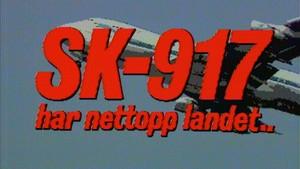 SK 917 har nettopp landet