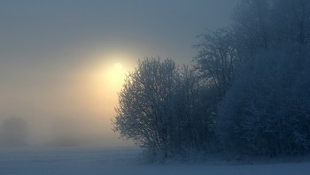 Tåke og vinter