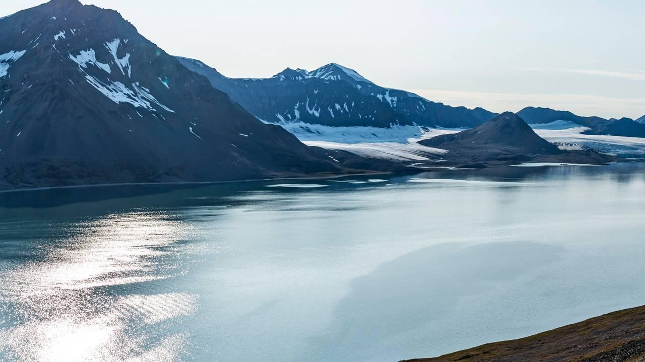 Trygghamna på Svalbard 2019